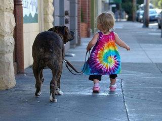 Šuniukas kaip ir vaikas - lygiateisis šeimos narys.