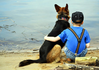 Daugumoje atvejų šuo ir vaikas tampa geriausi draugai.