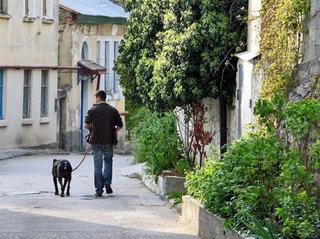 Pasivaikščiojimas su šuniuku naudingas ne tik augintiniui, bet ir šeimininkui.