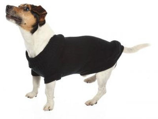 CROCI Stocholm megztinis šuniui