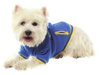 CROCI Cervinia mėlynas treningas šuniui