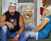 Hulk ir Brooke Hogan