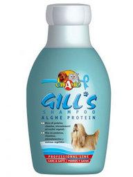 GILL'S Alghe Protein šampūnas