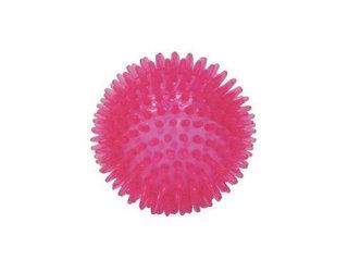 CANIAMICI Guminis kamuoliukas