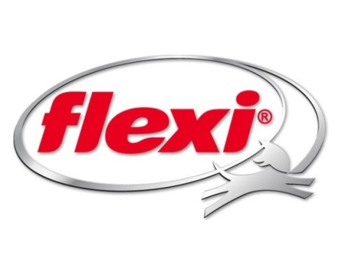 Flexi kompanijos logotipas