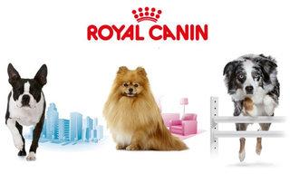 Royal Canin Life linija