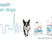 Royal Canin Urban Life